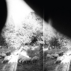 'Asunder, Sweet And Other Distress' mp3 Album by Godspeed You! Black Emperor