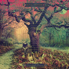 Crooked Doors mp3 Album by Royal Thunder