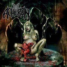 Rebirth: Metamorphosing Into Godhood mp3 Album by Acheron
