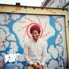 What For? mp3 Album by Toro Y Moi