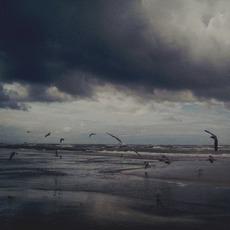 Bird's-Eye VIew EP mp3 Album by Diversity Of Silence