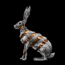 Jackrabbit mp3 Album by San Fermin