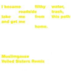 Veiled Sisters Remix by Muslimgauze