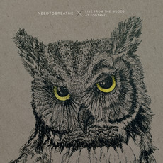Live From The Woods mp3 Live by NEEDTOBREATHE