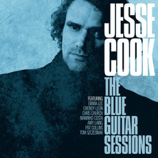 The Blue Guitar Sessions mp3 Album by Jesse Cook