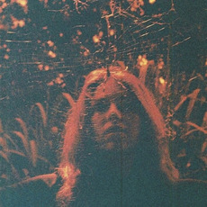 Peripheral VIsion mp3 Album by Turnover