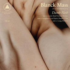 Dumb Flesh mp3 Album by Blanck Mass