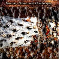 Subterranean Landscapes mp3 Album by Numina