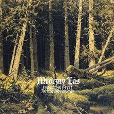 Mroczny Las mp3 Album by Forgotten Deity