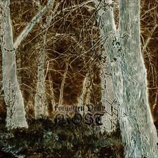 Frost mp3 Album by Forgotten Deity