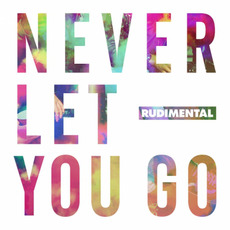Never Let You Go mp3 Single by Rudimental