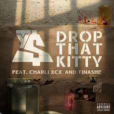 Drop That Kitty by Ty Dolla $ign