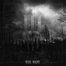 Hail Mary mp3 Album by Iwrestledabearonce