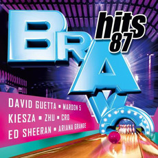 Bravo Hits 87 by Various Artists