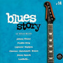 Blues Story n°14 Le Texas Blues