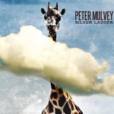 Silver Ladder mp3 Album by Peter Mulvey