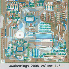 Awakenings 2008, Volume 1.5 by Various Artists