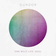 One Wild Life: Soul mp3 Album by Gungor