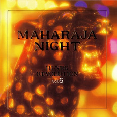 Maharaja Night: Hi-NRG Revolution, Volume 5 by Various Artists