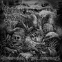 Defeated Sanity & Mortal Decay