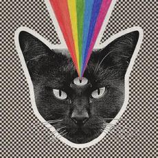Black Cat mp3 Album by Never Shout Never