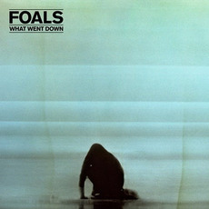 What Went Down mp3 Album by Foals