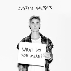 What Do You Mean? mp3 Single by Justin Bieber