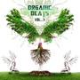 Organic Beats, Volume 3