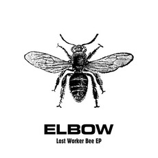 Lost Worker Bee EP mp3 Album by Elbow