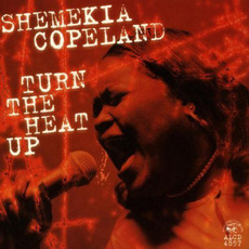 Turn the Heat Up mp3 Album by Shemekia Copeland