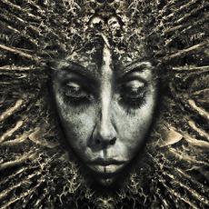 Black Days mp3 Album by Klone