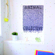 Live at 9:30 (Limited Edition) mp3 Live by Animal Collective