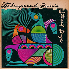 Street Dogs (Deluxe Edition) mp3 Album by Widespread Panic