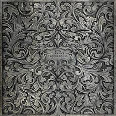 The Turnpike Troubadours mp3 Album by Turnpike Troubadours