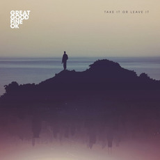 Take It or Leave It mp3 Single by Great Good Fine OK