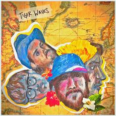 Lost Album mp3 Album by Tiger Waves