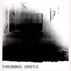 Journey Through a Body mp3 Album by Throbbing Gristle