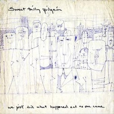 We Just Did What Happened and No One Came mp3 Album by Sweet Billy Pilgrim