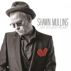 My Stupid Heart mp3 Album by Shawn Mullins