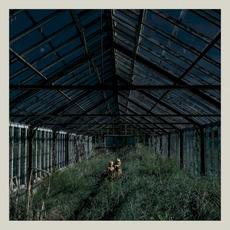 Dealer mp3 Album by Foxing