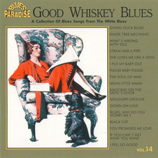 Good Whiskey Blues, Vol.14 mp3 Compilation by Various Artists