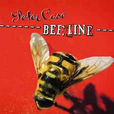 Beeline mp3 Album by Peter Case