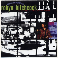 Storefront Hitchcock by Robyn Hitchcock
