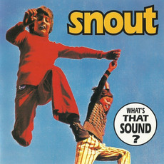 What's That Sound? mp3 Album by Snout