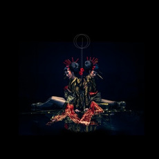 DIVISION (Limited Edition) mp3 Album by the GazettE