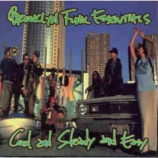 Cool and Steady and Easy mp3 Album by Brooklyn Funk Essentials