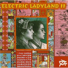Electric Ladyland II mp3 Compilation by Various Artists