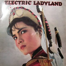 Electric Ladyland mp3 Compilation by Various Artists