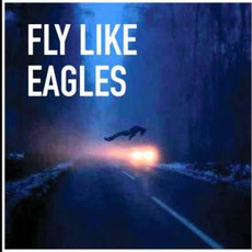 Fly Like Eagles by Dogs