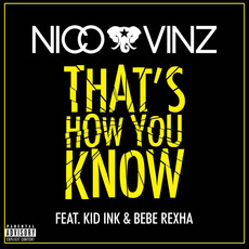 That's How You Know mp3 Single by Nico & Vinz